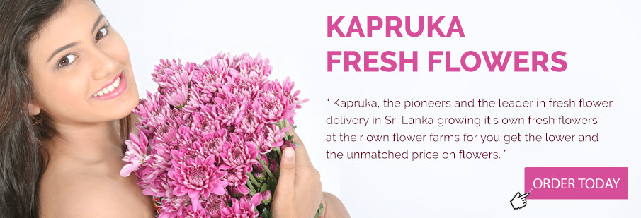 Online Shopping in Sri Lanka - Kapruka
