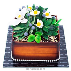 Flower Pot Ribbon Cakeat Kapruka Online forcakes