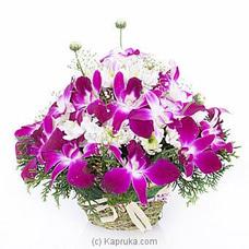 Sympathy Orchid In Basket By Flower Republic at Kapruka Online for flowers