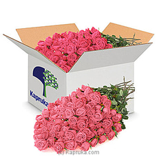 250 Pink Roses - Wholesale Priced By Flower Republic at Kapruka Online for flowers