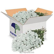 250 White Roses -Wholesale Priced By Flower Republic at Kapruka Online for flowers