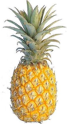 Pineapple at Kapruka Online