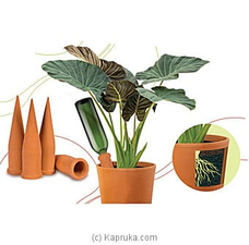 Self Watering Spikes- 4 Pieces Pack By Pochchi at Kapruka Online for specialGifts