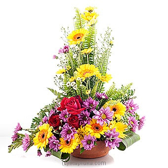 Melody Of Summer Online at Kapruka | Product# flowers00T592