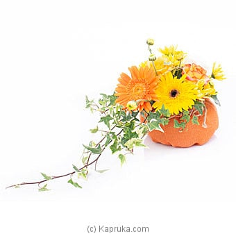 Eternal Summer Online at Kapruka | Product# flowers00T1134