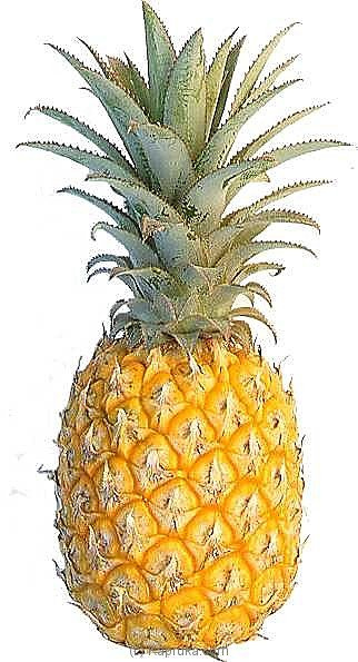 Pineapple Online at Kapruka | Product# fruits00100