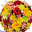 Shop in Sri Lanka for Sundry Hues - Mix Of Chrysanthemums, Gerberas And Celosia
