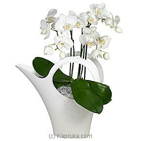 Orchid & Koziol Water-can at Kapruka Online for intgift