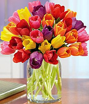 30 Rainbow Tulips at Kapruka Online for intgift