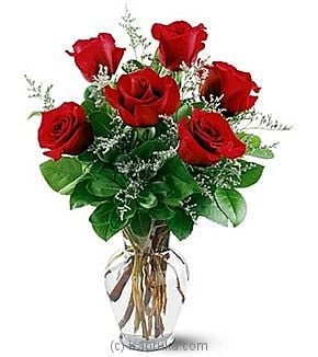 6 Red Roses at Kapruka Online for intgift