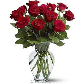 12 Red Roses at Kapruka Online for intgift