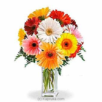 Rainbow Gerbera Bouquet at Kapruka Online for intgift