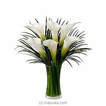 White Calla Lilies Bouquet at Kapruka Online for intgift