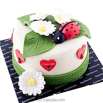Ladybird Love Online at Kapruka | Product# cake00KA00521