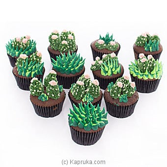 Cactus Lovers Cupcakes -12 Pieces