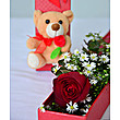Only You Rose and Teddy at Kapruka Online