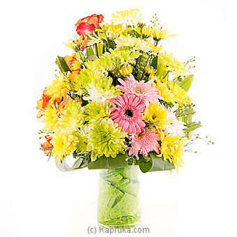 Daisy Drop Dreams at Kapruka Online for flowers