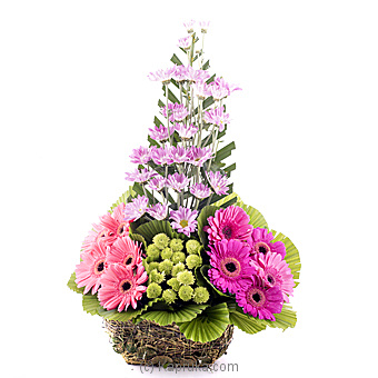 Serenity Blooms at Kapruka Online for flowers