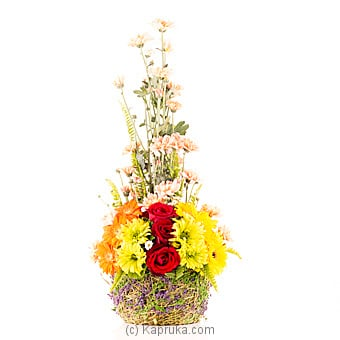 Charming Beauty at Kapruka Online for flowers