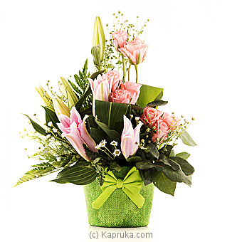 Merry Moments at Kapruka Online for flowers