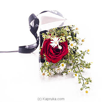 My One And Only at Kapruka Online for flowers
