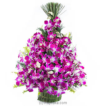 Exotic Beauty at Kapruka Online for flowers
