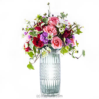 Twinkle Bright at Kapruka Online for flowers