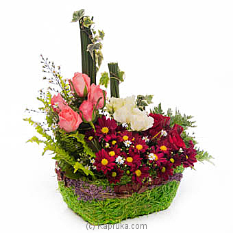 Autumn Harvest at Kapruka Online for flowers