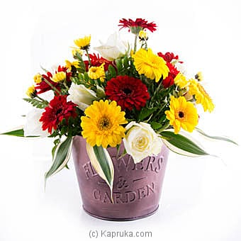 Lush Blooms at Kapruka Online for flowers