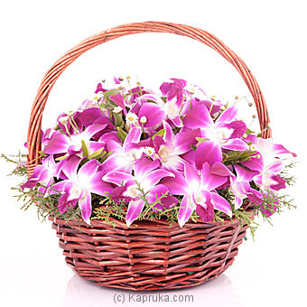 Orchid Basket at Kapruka Online for flowers