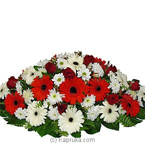 Gerberas Coffin Wreath Online at Kapruka | Product# flowers00T207