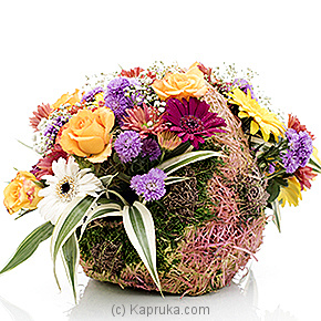 Wildly Charmed By You Online at Kapruka | Product# flowers00T529