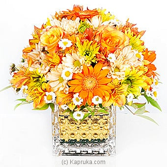 Golden Flames Of Passion Online at Kapruka | Product# flowers00T532