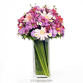 Purple Parade Online at Kapruka | Product# flowers00T530