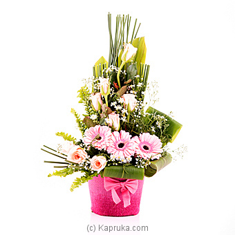 Simply Sweet Online at Kapruka | Product# flowers00T743