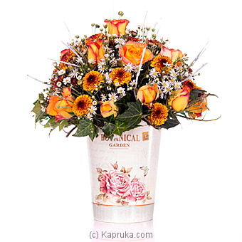 Golden Dawn Online at Kapruka | Product# flowers00T750
