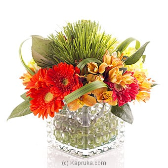 Season Twist Online at Kapruka | Product# flowers00T780