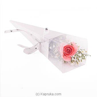 Pink Rose for p.. at Kapruka Online