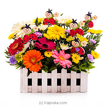 Smiles And Sunshine Online at Kapruka | Product# flowers00T874
