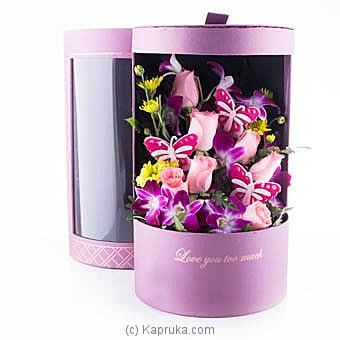 Butterfly crush at Kapruka Online for flowers