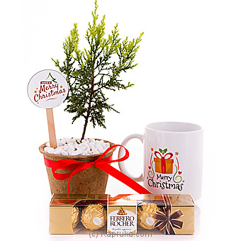 Jingle Bells Christmas Pack Online at Kapruka | Product# flowers00T1028