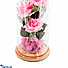 Kapruka Online Shopping Product Eternity Rose Dome