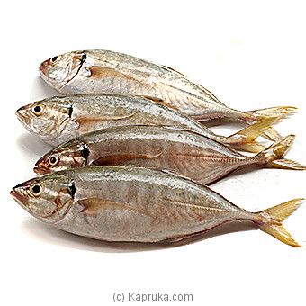 `Hinati Paraw` Fresh  Fish  - 3 Kg at Kapruka Online for specialGifts