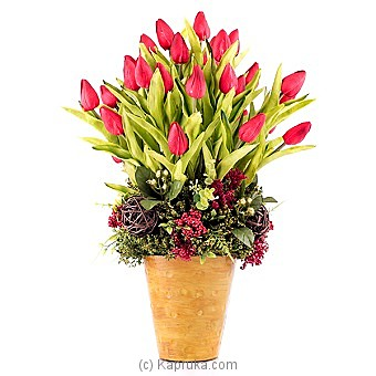 Pink Tulips at Kapruka Online for specialGifts