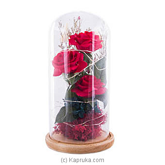 Sparkle Beauty And The Beast Rose Dome at Kapruka Online for specialGifts
