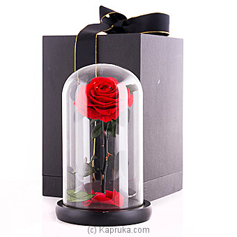 Beauty and The Beast Preserved Fresh Flower at Kapruka Online for specialGifts