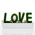 Tub Of  Sweet Love at Kapruka Online