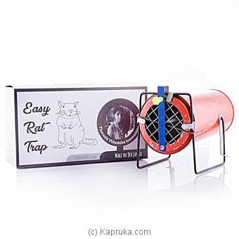 Easy Rat Trap Online at Kapruka | Product# household00290