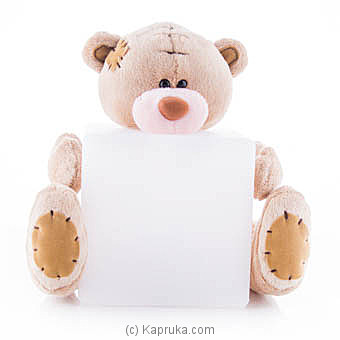 Toy Night Light Teddy Online at Kapruka | Product# ornaments00588