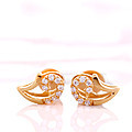 22K Gold Ear Stud With 16(c/z) Rounds at Kapruka Online